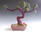 Schlemmer Bonsai Tree