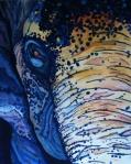 Elephant Freckles
